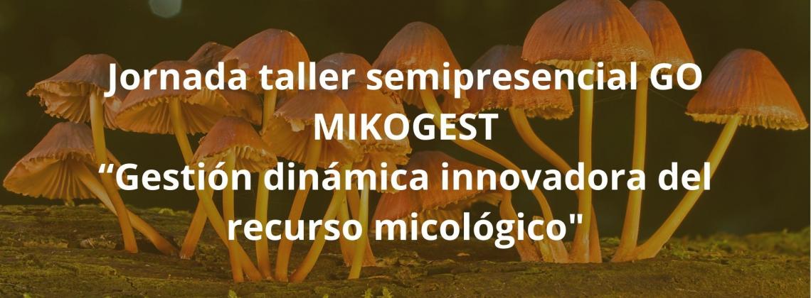 Jornada taller semipresencial GO MIKOGEST